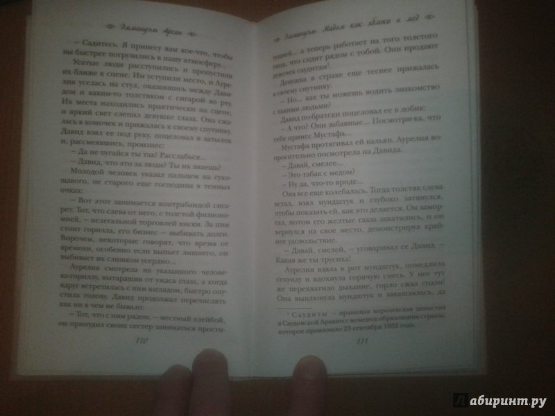 Иллюстрация 26 из 30 для Эммануэль. Мадам как яблоко и мед - Эммануэль Арсан | Лабиринт - книги. Источник: Корниенко  Василий