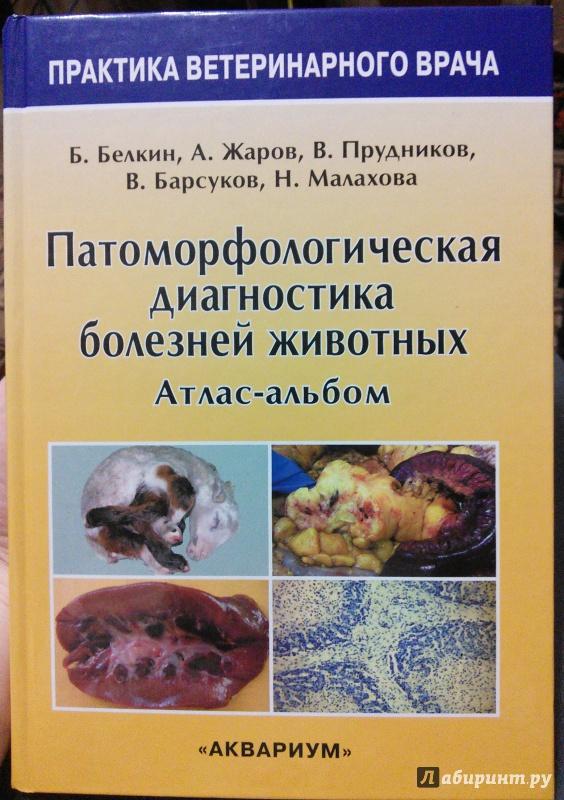 Иллюстрация 2 из 14 для Патоморфологическая диагностика болезней животных. Атлас-альбом - Белкин, Жаров, Прудников | Лабиринт - книги. Источник: Like The Wind