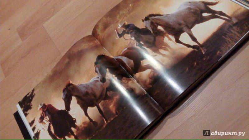 Иллюстрация 4 из 25 для Лошади. Самые лучшие фотографии | Лабиринт - книги. Источник: @СеребряноеТысячелетие