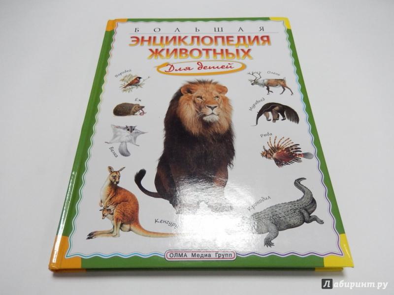 Энциклопедия о животных для детей картинки