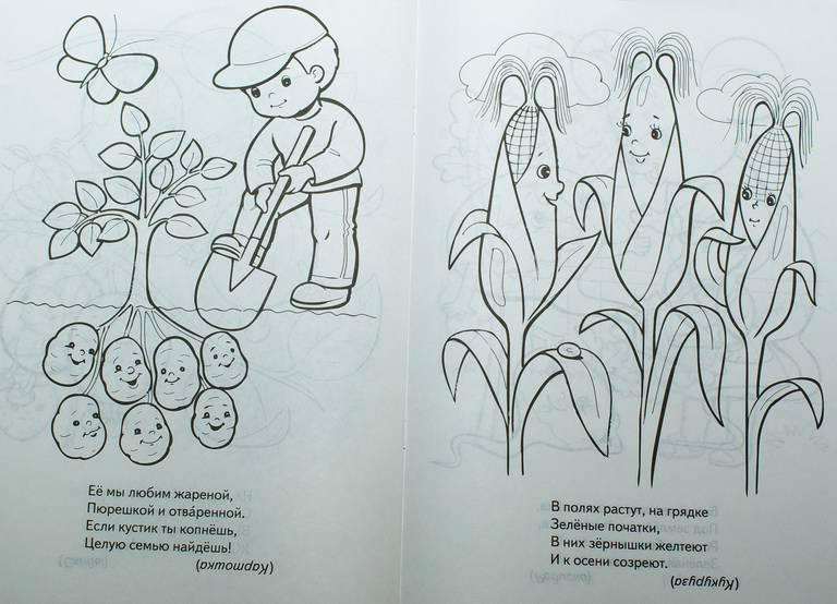 спирс картинка сад и огород распечатать конце урока будет