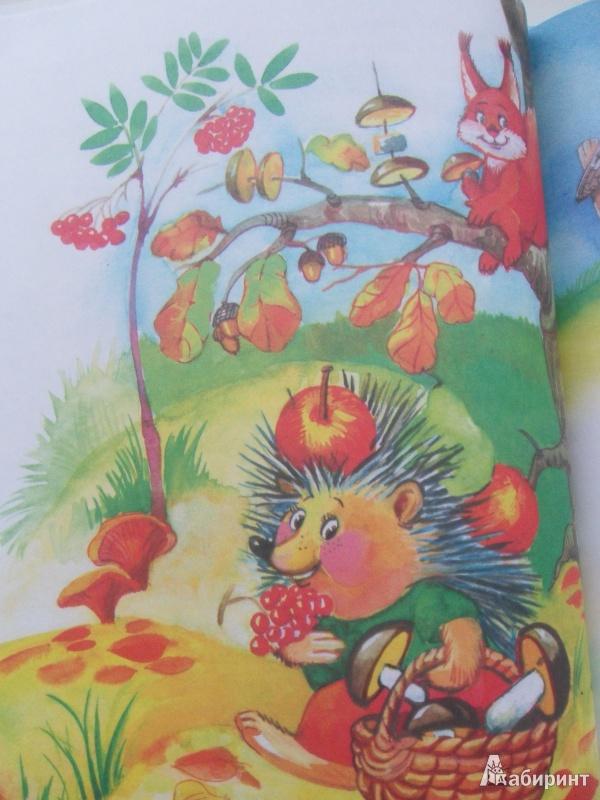 Иллюстрация 16 из 26 для Сказки почемучки, Лесной календарь - Тамара Крюкова | Лабиринт - книги. Источник: knigolyub