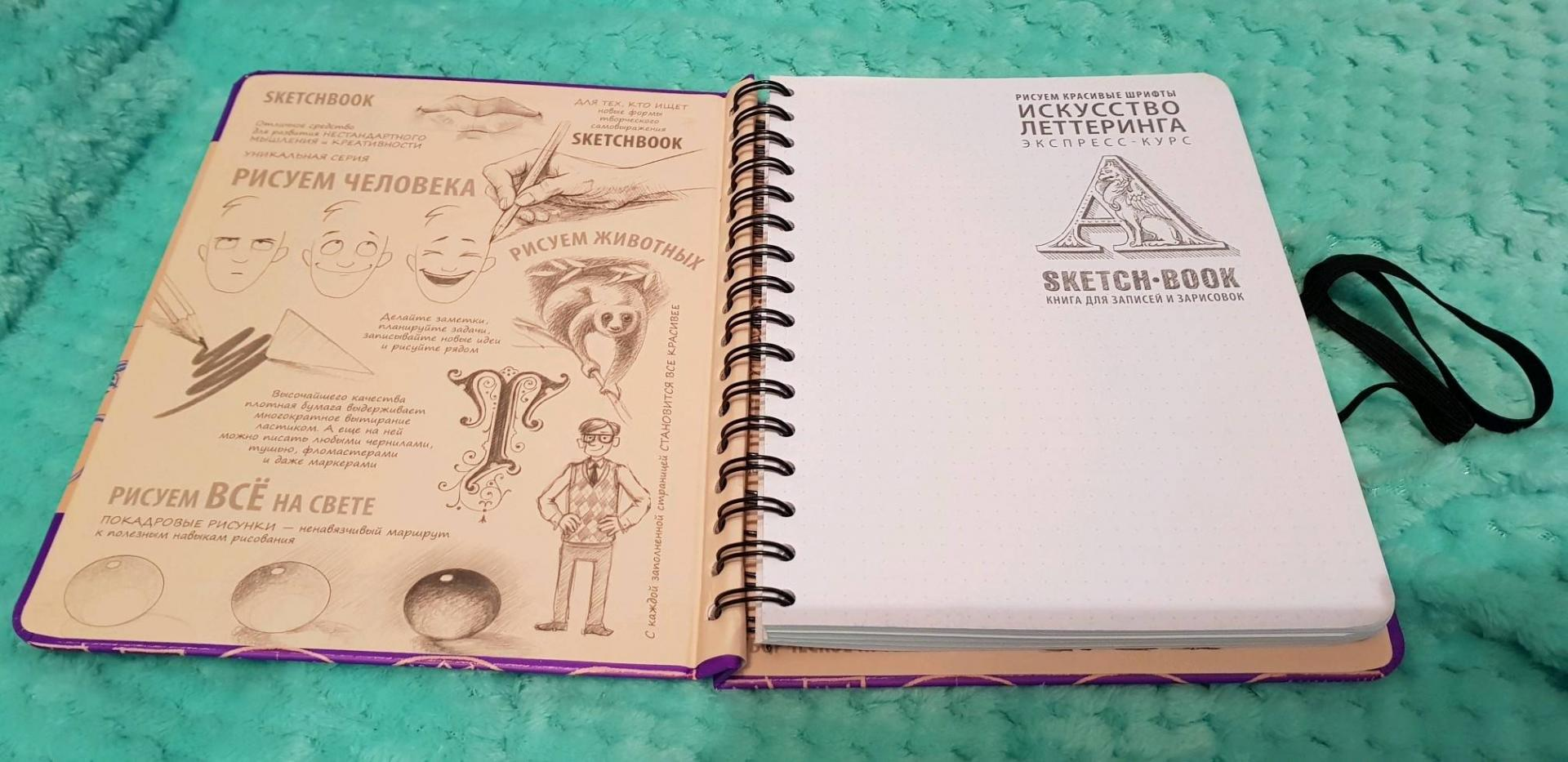 Иллюстрация 29 из 30 для Sketchbook. Рисуем красивые шрифты. Искусство леттеринга. Визуальный экспресс-курс рисования - Пименова, Осипов   Лабиринт - книги. Источник: Nosta-Lind