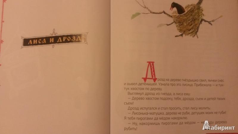 Иллюстрация 4 из 16 для Лисичка-сестричка | Лабиринт - книги. Источник: Шляжко  Наталья Александровна