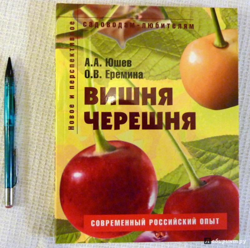 Иллюстрация 27 из 34 для Вишня, черешня. Пособие для садоводов-любителей - Еремина, Юшев | Лабиринт - книги. Источник: WhiteRacoon