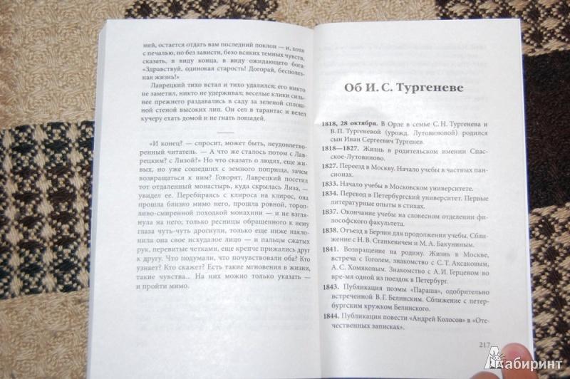Иллюстрация 16 из 17 для Дворянское гнездо - Иван Тургенев | Лабиринт - книги. Источник: evil_academic