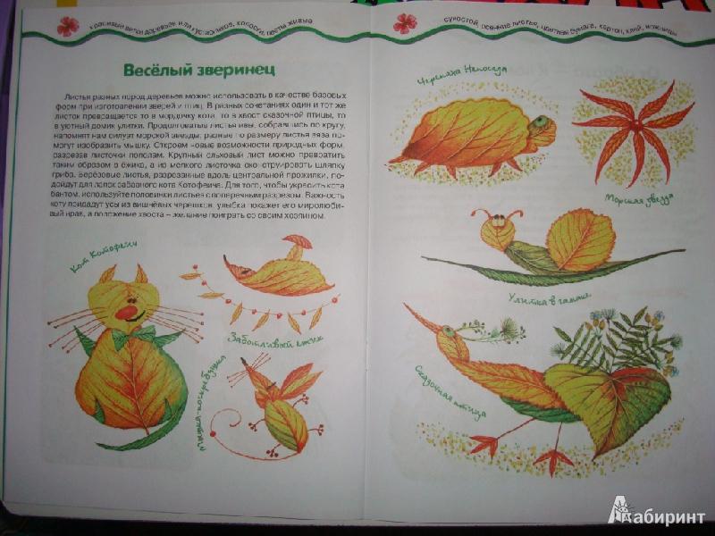 Иллюстрация 7 из 22 для Мастерилка № 7. Листья, травы, семена. Аппликация из листьев - Татьяна Рогаткина | Лабиринт - книги. Источник: Ирчик