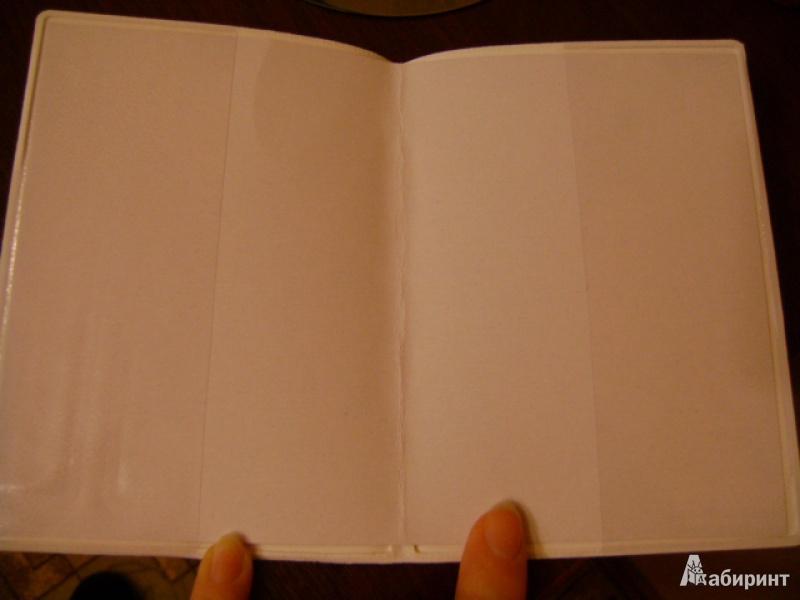 Иллюстрация 8 из 17 для Обложка для паспорта (32401) | Лабиринт - канцтовы. Источник: anchutka