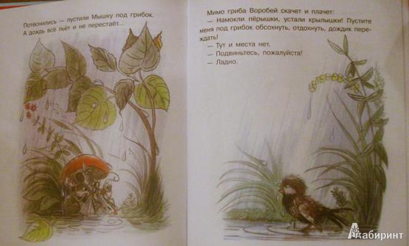 Иллюстрация 3 из 10 для Маленькие приключения - Владимир Сутеев | Лабиринт - книги. Источник: orange_viola