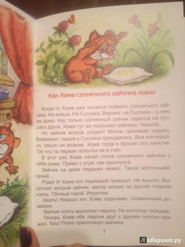 Иллюстрация 11 из 22 для Солнечный зайчик Хомы и Суслика - Альберт Иванов   Лабиринт - книги. Источник: Ксения В.