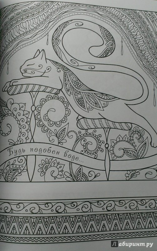 Иллюстрация 13 из 23 для Котомудрости. Раскраска для ...
