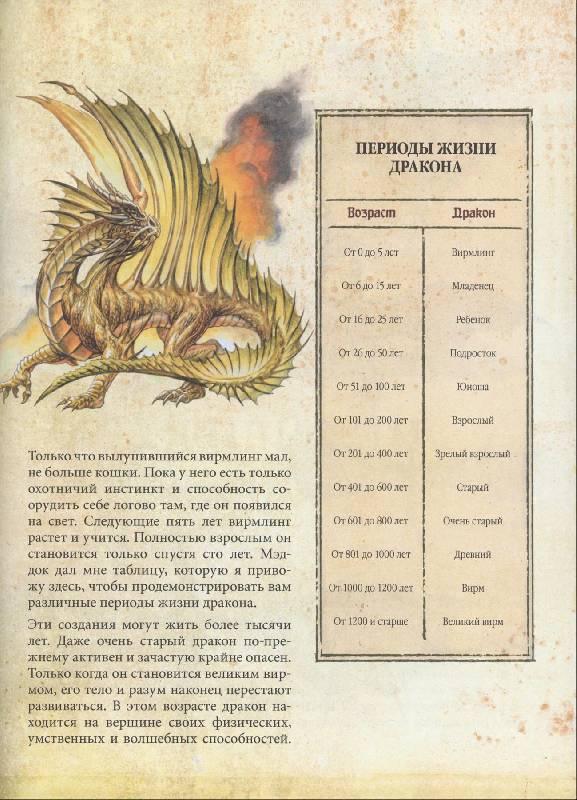 энциклопедия о драконах с картинками быту царицу