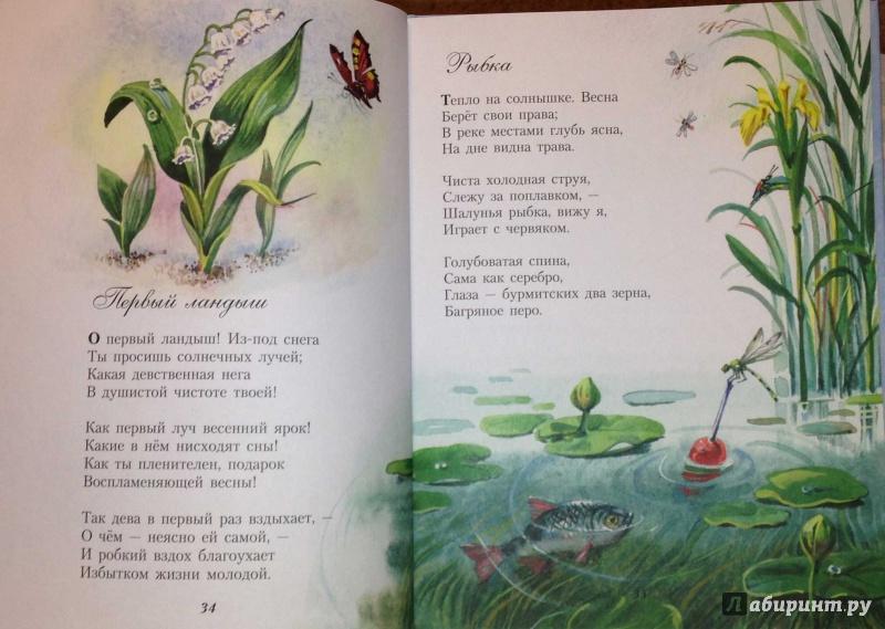 иллюстрации к поэзии фета речь идет красоте