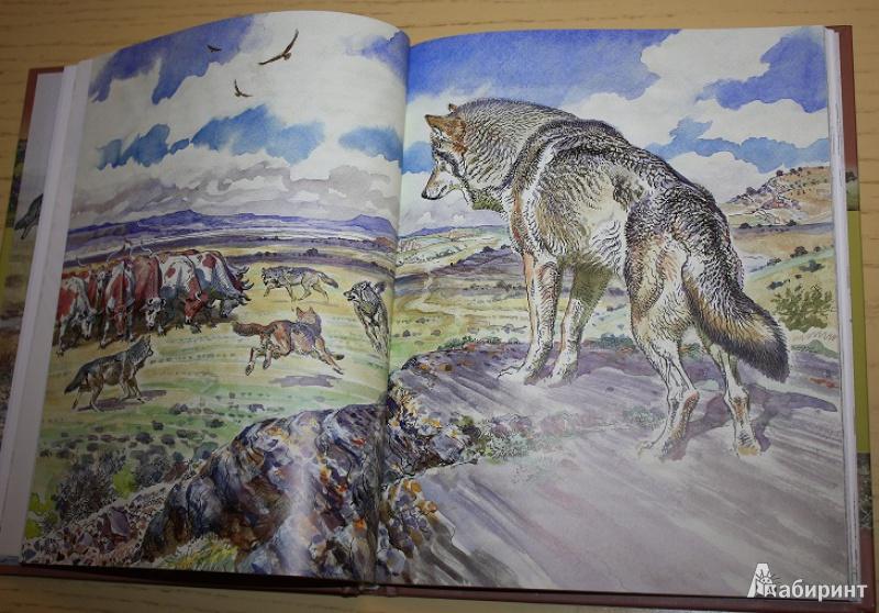 Картинки к произведению виннипегский волк