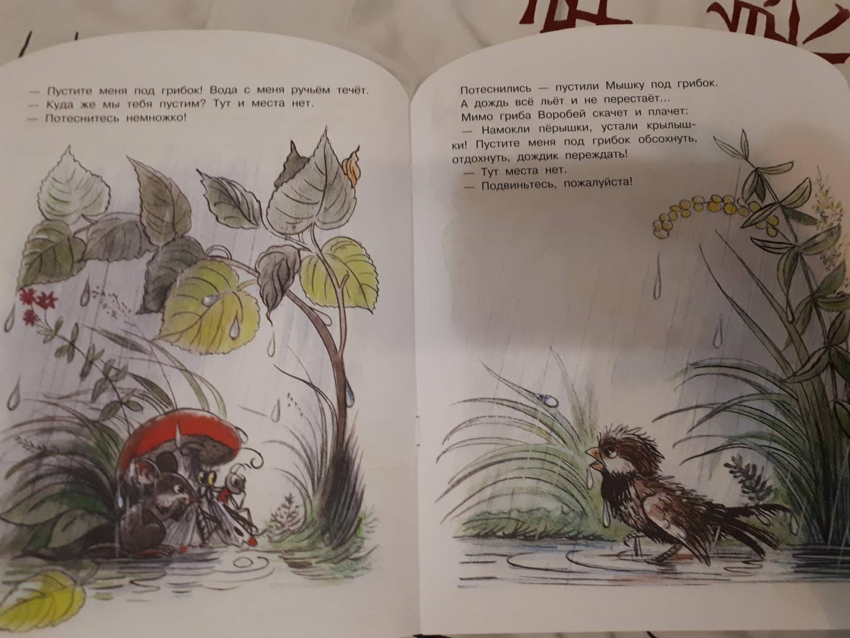 Иллюстрация 9 из 13 для Под грибом - Владимир Сутеев | Лабиринт - книги. Источник: Elena  Antimir