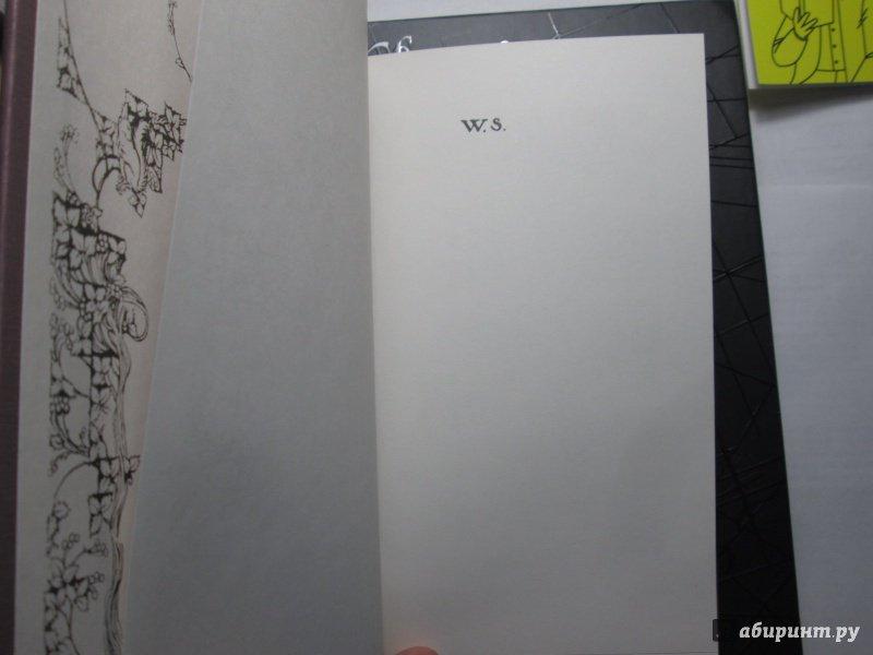 Иллюстрация 52 из 72 для Буря - Уильям Шекспир   Лабиринт - книги. Источник: bродяжник