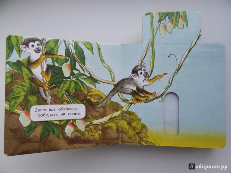 Иллюстрация 31 из 49 для Что у мишки на обед? - Юлия Шигарова | Лабиринт - книги. Источник: Мелкова  Оксана