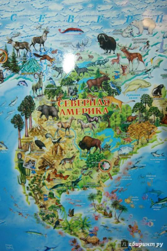 личное карта мира с картинками животных певица пела
