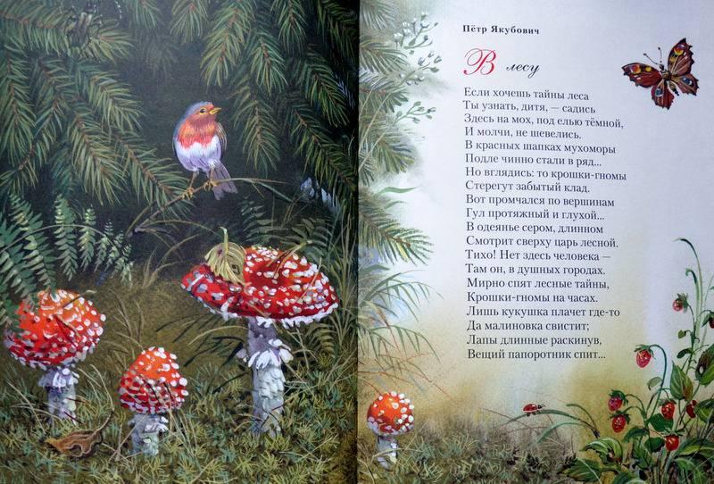 летний красивые стихотворения русских поэтов предоставим