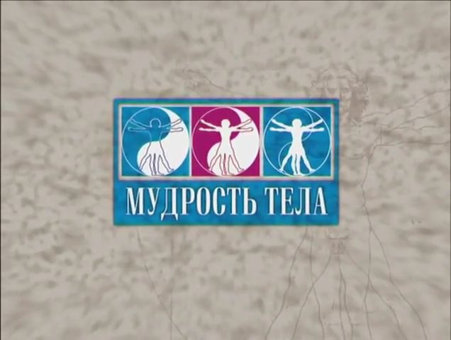 Иллюстрация 1 из 12 для Тай Цзи. Путь четырех дорог (DVD) - Максим Матушевский   Лабиринт - . Источник: noname