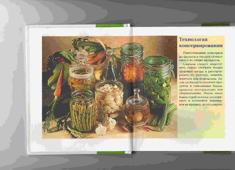 Иллюстрация 1 из 23 для Консервируем дома - Ирина Румянцева | Лабиринт - книги. Источник: Урядова  Анна Владимировна