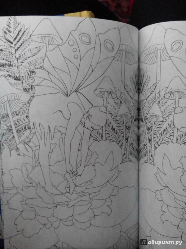 Иллюстрация 36 из 59 для Лесные феи. Мини-раскраска ...