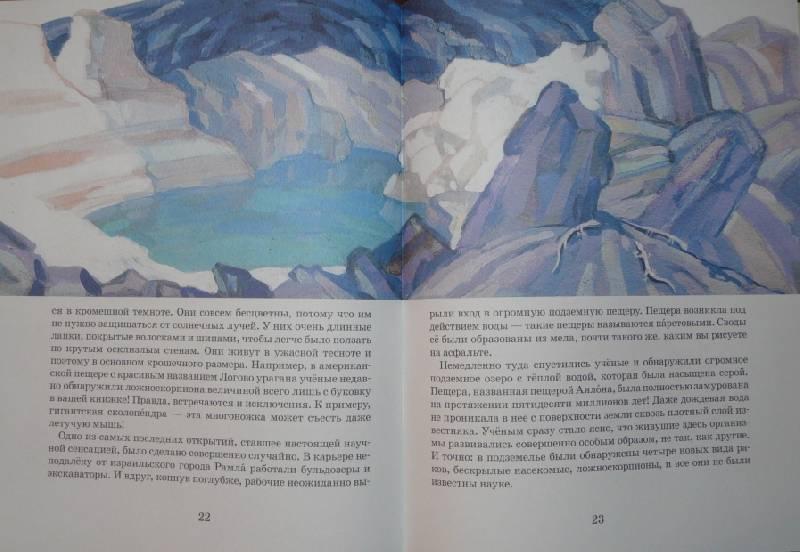 Иллюстрация 12 из 28 для Невиданные зверушки - Ольга Велейко | Лабиринт - книги. Источник: Юлика-Юла