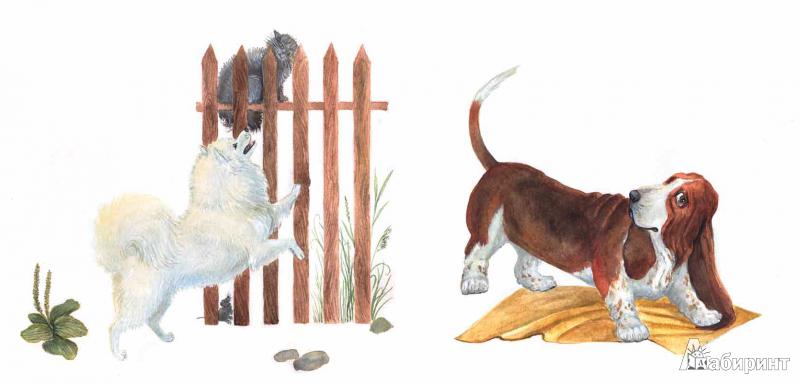 Иллюстрация 6 из 22 для Собачьи мечты - Игорь Карде   Лабиринт - книги. Источник: !!!