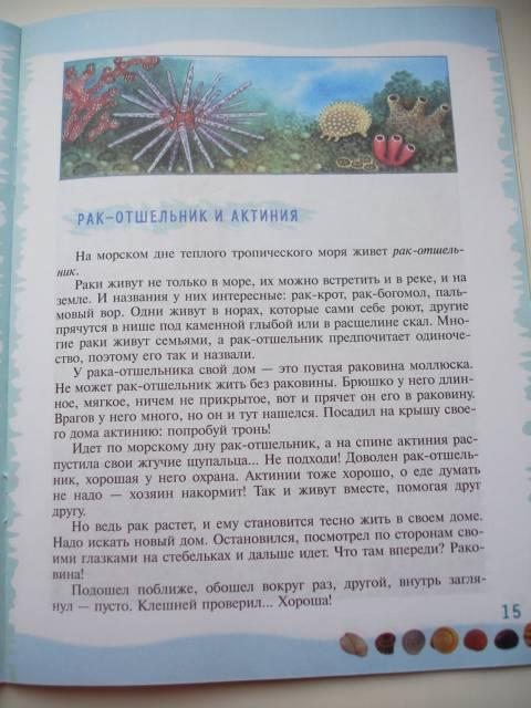 Иллюстрация 39 из 39 для Тайны морского дна: книга для чтения детям - Геннадий Целищев | Лабиринт - книги. Источник: Осьминожка