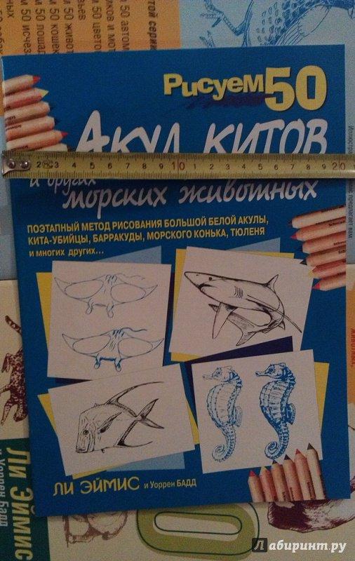 Иллюстрация 11 из 29 для Рисуем 50 акул, китов и других морских животных - Эймис, Бадд | Лабиринт - книги. Источник: ss0263042