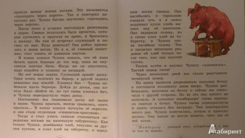 Иллюстрация 10 из 35 для Мои звери - Владимир Дуров | Лабиринт - книги. Источник: Katty