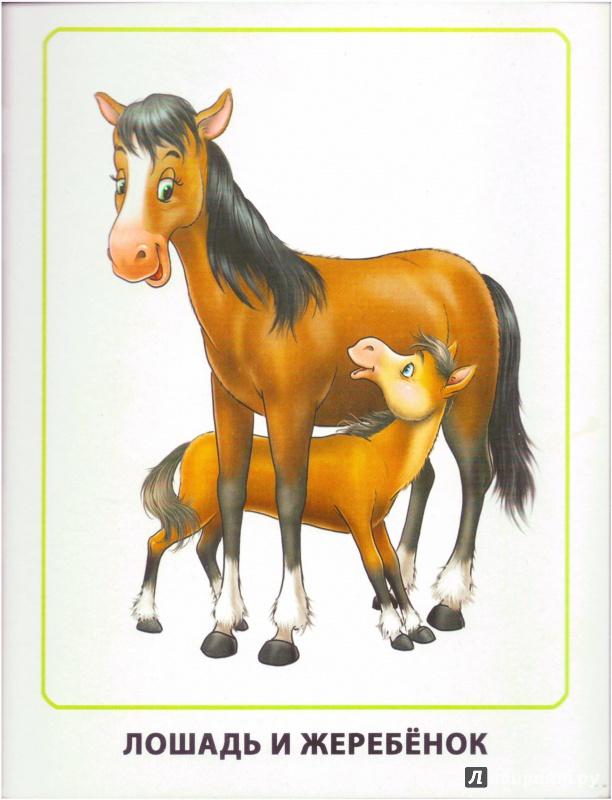 летние рисунки животных мама и детеныш мужу