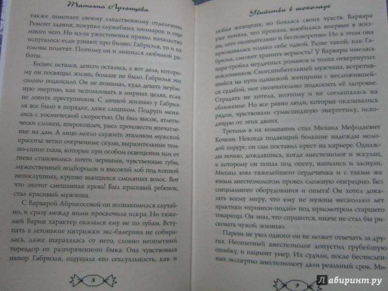 Иллюстрация 5 из 6 для Убийства в шоколаде - Татьяна Луганцева | Лабиринт - книги. Источник: )  Катюша