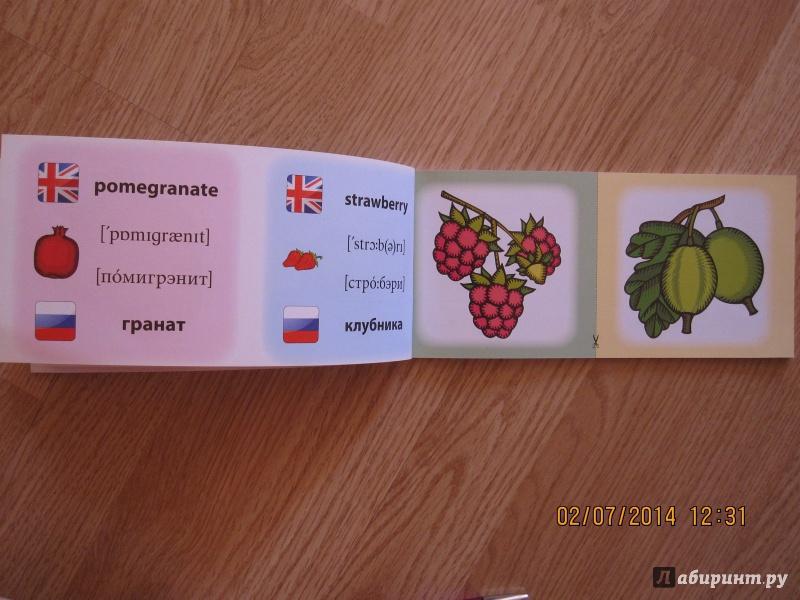 Иллюстрация 10 из 16 для Овощи. Фрукты. Коллекция карточек - Лариса Зиновьева   Лабиринт - книги. Источник: Русских  Юлия