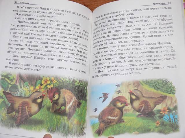 Иллюстрация 7 из 19 для Лесные домишки - Виталий Бианки   Лабиринт - книги. Источник: Irbis