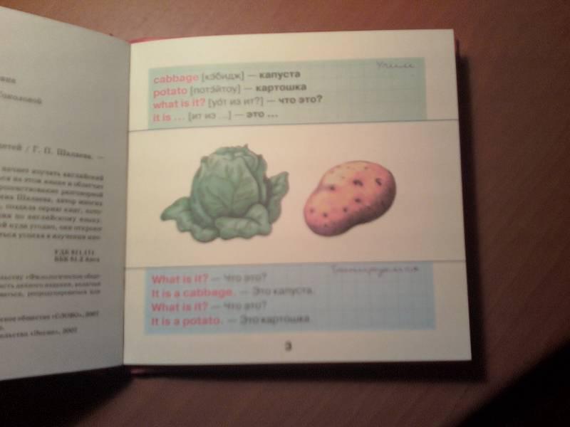 Иллюстрация 7 из 15 для Овощи и фрукты - Галина Шалаева   Лабиринт - книги. Источник: Марина В.