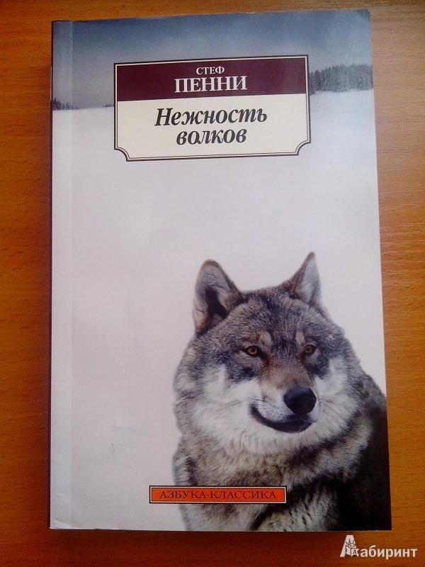 Иллюстрация 1 из 21 для Нежность волков - Стеф Пенни   Лабиринт - книги. Источник: uchenik