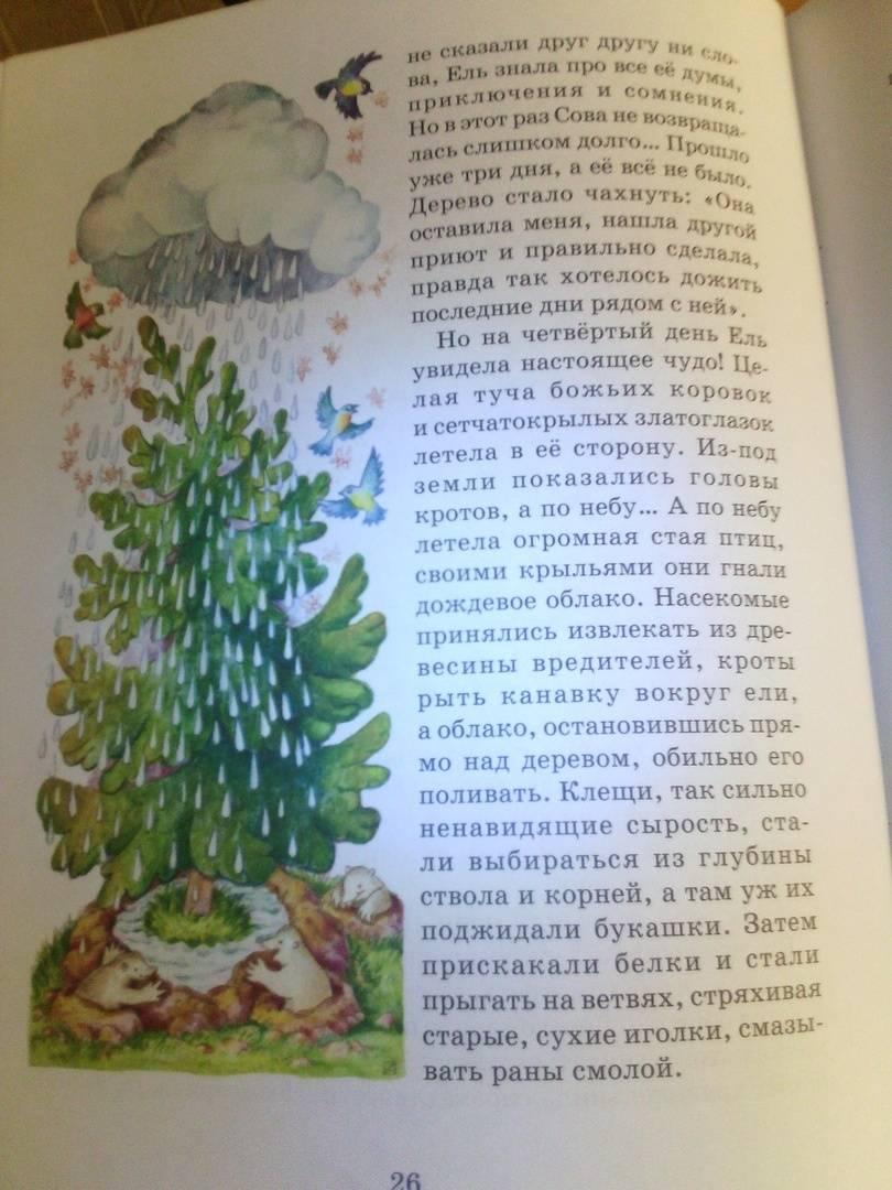 Иллюстрация 5 из 8 для Хранительница справедливости. Сказка про Сову из сказочного леса - Марина Челик | Лабиринт - книги. Источник: Светлячок:)