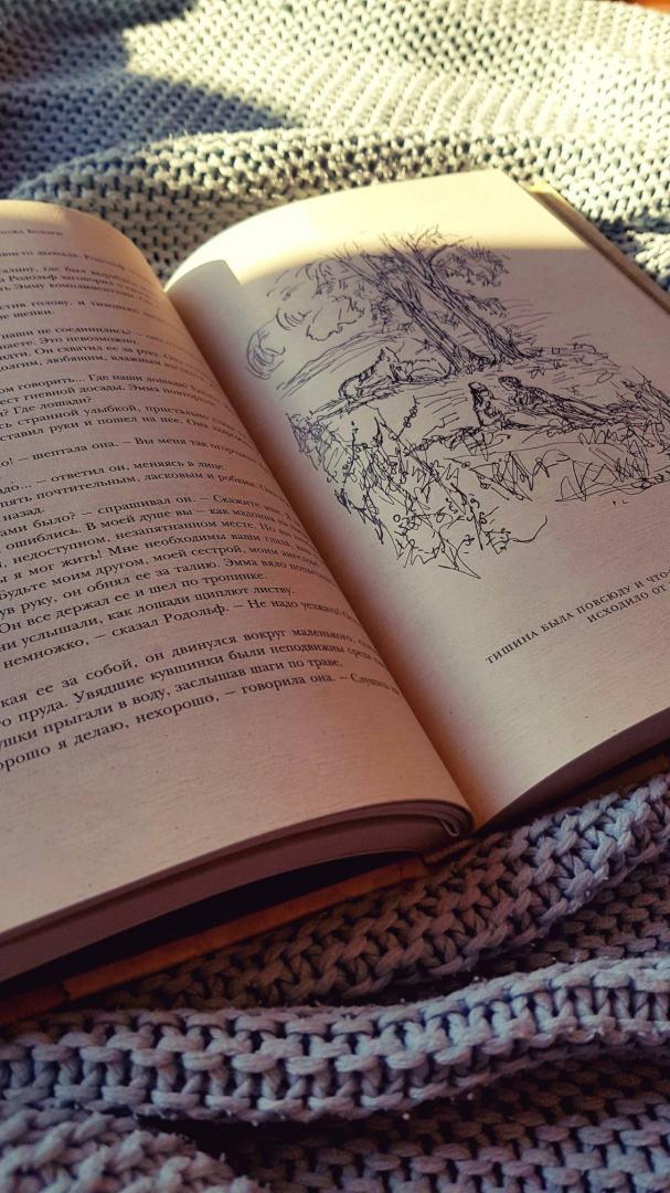 Иллюстрация 36 из 37 для Госпожа Бовари. Провинциальные нравы - Гюстав Флобер | Лабиринт - книги. Источник: Баранова  Татьяна