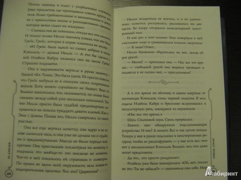 Иллюстрация 13 из 23 для Сквозь строй. Книга 10 - Маргарет Хэддикс | Лабиринт - книги. Источник: Ольга