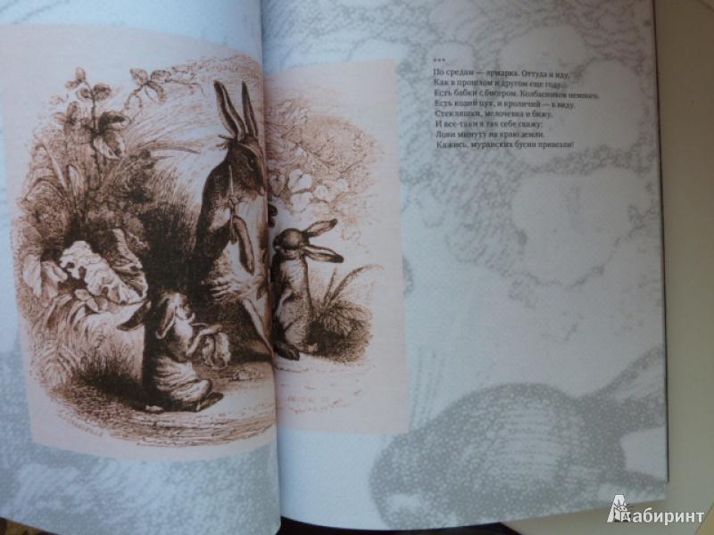 Иллюстрация 9 из 39 для Нормандская тетрадь - Вероника Долина | Лабиринт - книги. Источник: elenak
