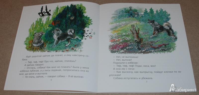 Иллюстрация 14 из 51 для Лиса и заяц - Евгений Чарушин | Лабиринт - книги. Источник: Книжный кот