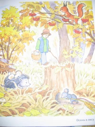 Иллюстрация 2 из 8 для Осень в картинках. Наглядное пособие для педагогов, логопедов, воспитателей и родителей | Лабиринт - книги. Источник: Домовушка