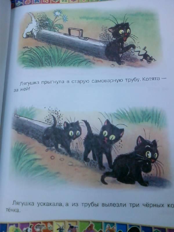 Иллюстрация 15 из 39 для 50 любимых маленьких сказок - Бианки, Остер, Аникин   Лабиринт - книги. Источник: lettrice