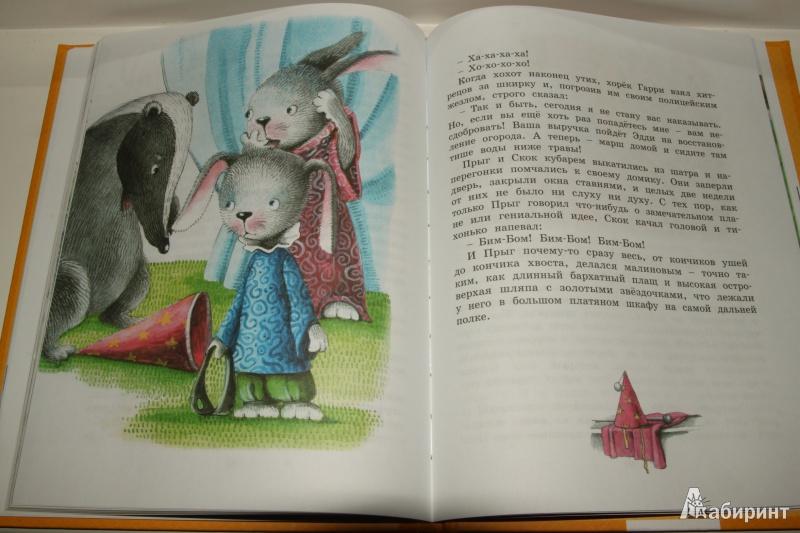 Иллюстрация 13 из 21 для Знаменитый утёнок Тим - Энид Блайтон | Лабиринт - книги. Источник: Павлинова  Ирина Евгеньевна