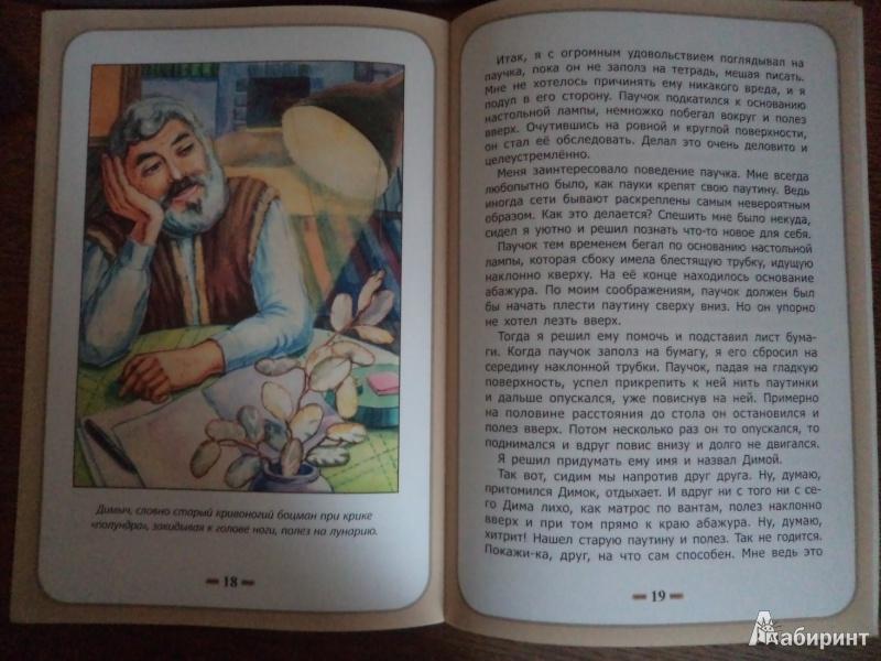 Иллюстрация 8 из 9 для Сострадание к животным - Белевцева, Жданова | Лабиринт - книги. Источник: Karfagen