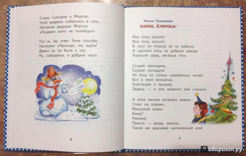Иллюстрация 3 из 16 для Пришла зима-проказница | Лабиринт - книги. Источник: Селезнева  Елена