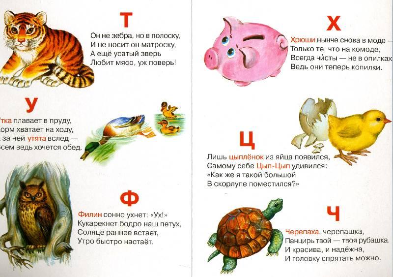 Иллюстрация 1 из 2 для Азбука - Евгений Кузьмин   Лабиринт - книги. Источник: РИВА