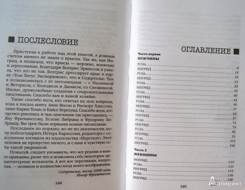 картинка послесловие книги конструкции