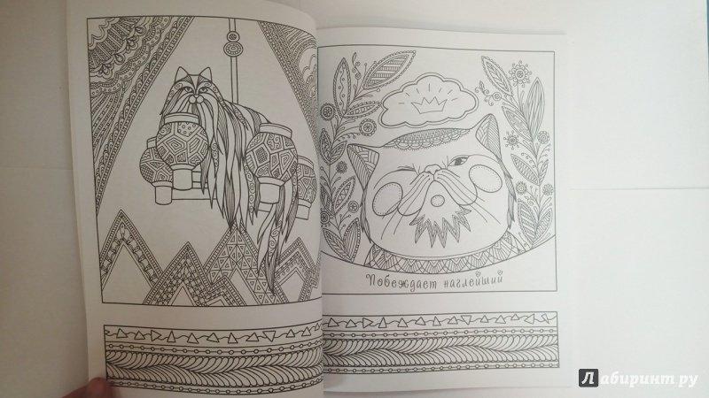 Иллюстрация 5 из 23 для Котомудрости. Раскраска для ...